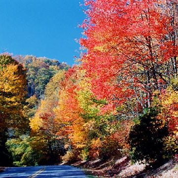 The Great Smoky Mountains in the Fall in Maggie Valley, NC